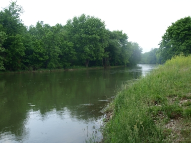Mad River with trees refelcted in the water