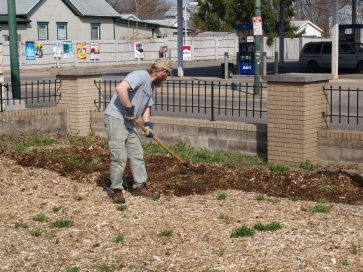 Urban gardener in east Dayton